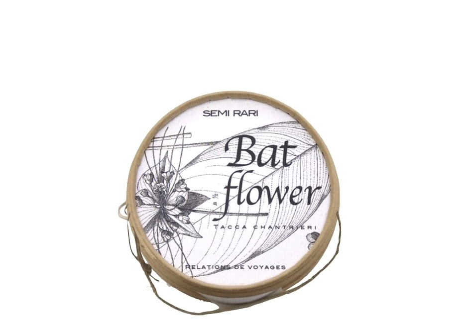 Semi di bat flower